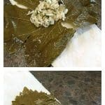 Dolmas or dolmades are very versatile; they can be eaten cold or warm. Traditionally dolmas containing meat are eaten warm with a yogurt sauce that is lightly flavored with garlic. Rice filled dolmas are served cold with a drizzling of lemon juice and olive oil. Dolmas usually have a combination of spices that are both savory and aromatic, a culinary practice of Arab origins. | ethnicspoon.com