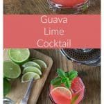 Tangy, tart and sweet guava lime cocktail refreshes on a hot day! Squeeze some limes, add tequila and guava juice and a sprig of mint! Simple and delicious. It's kind of like a margarita except it's stirred and has no salt. Enjoy! | ethnicspoon.com
