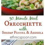 Orecchiette with shrimp, fennel and arugula brings bright fresh flavors in a 30 minute meal! Tasty shrimp, savory fennel and tangy arugula are a great flavor combination. You will love this quick and easy dish for a weeknight meal. | ethnicspoon.com