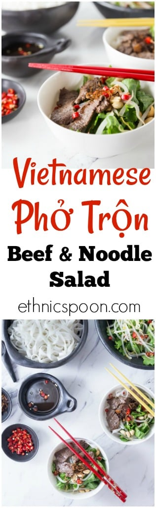 You will love this cool salad with authentic Vietnamese flavors! Vietnamese Beef Noodle Salad (Phở Trộn) is a delicious recipe for noodle salad mostly eaten during the hot summers in Hanoi or anywhere when you need a cool dish for lunch or dinner. This has some of the best Vietnamese contrast of flavors: salty, sour, sweet, bitter and some hot chillies for some heat too! Try some Pho Tron! So Good! | ethnicspoon.com