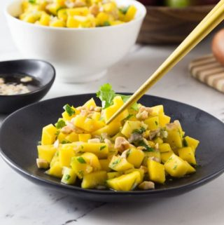 Vietnamese mango salad: A simple salad consisting of diced mango, rice vinegar, shallots, cilantro, fish sauce, peanuts, lime juice and palm sugar. The flavors in this salad have a balance of sweet, tart, bitter and salty. The chopped peanuts give it a nice crunch! | ethnicspoon.com